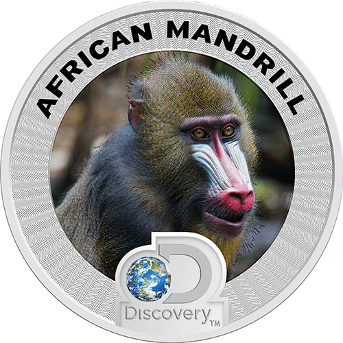 Discovery Africa Silver Coin Mandrill