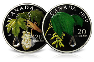 Canadian Raindrops Coins