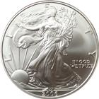 2006-W Burnished American Silver Eagle | With Box & COA