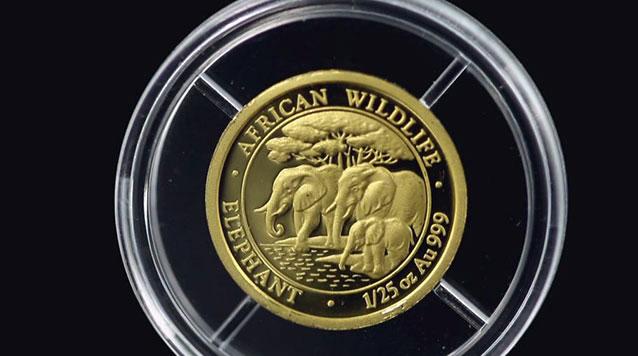 2013 1/25 oz Gold Somali Elephant