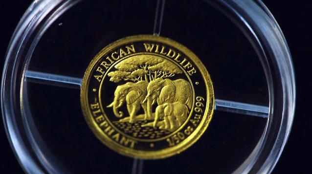 2013 1/50 oz Gold Somali Elephant