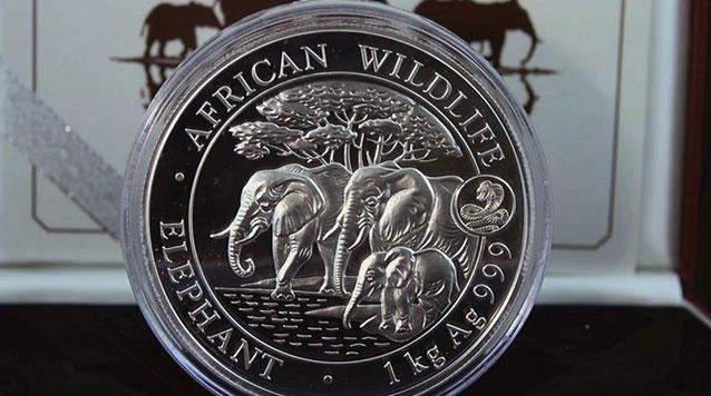 2013 1 Kilo Silver Somalian Elephant With Lunar Snake Privy Mark