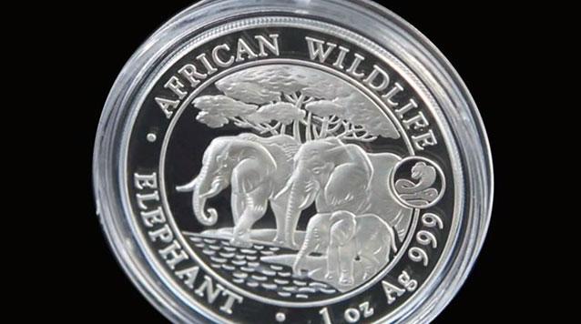2013 1 oz Somalian African Elephant With Lunar Snake Privy Mark Silver Coin