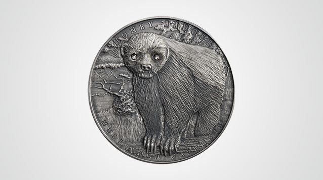 2015 Honey Badger Brave Animals 2 oz High Relief Silver Product Video