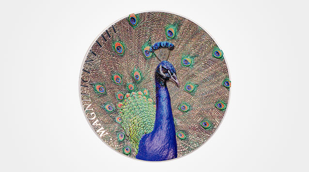 Peacock - Magnificent Life 1 oz High Relief Silver Coin Product Video