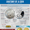 anatomy of a coin